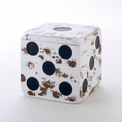 Large Storage Dice