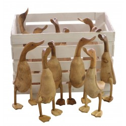 12 Wooden Ducks in a White Crate